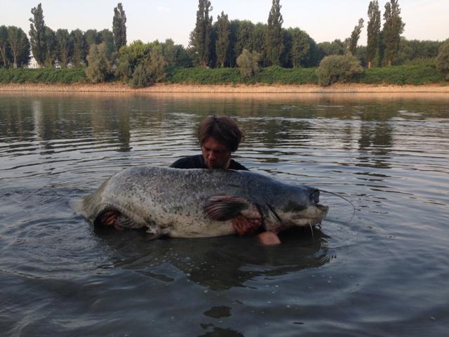 Rzeka Pad - www.przewodnicywedkarscy.pl - Wyprawy wędkarskie na suma
