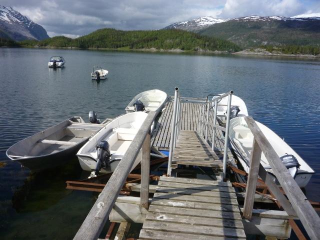 Wyprawy wędkarskie do Norwegii - www.przewodnicywedkarscy.pl - Norwegia Tosen wyspa Vega