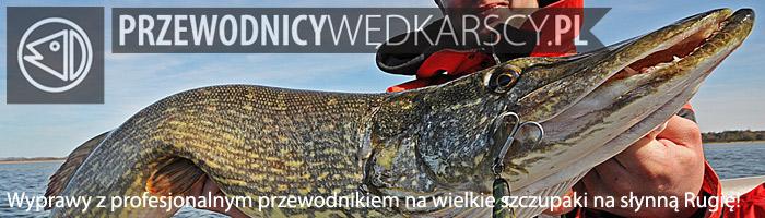 Wyprawy wędkarskie na Rugię - www.przewodnicywedkarscy.pl - Wyprawy na szczupaki