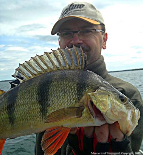 Jezioro Boren - www.przewodnicywedkarscy.pl - Na ryby do Szwecji