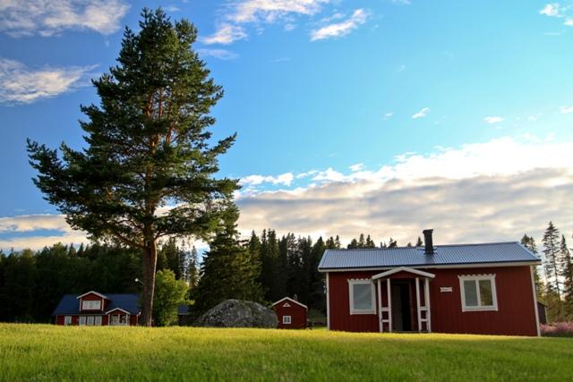 Na ryby do Szwecji - www.przewodnicywedkarscy.pl - Wyprawy do Laponii