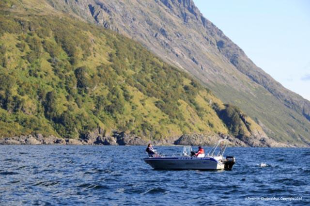 Wędkarstwo w Norwegii - www.przewodnicywedkarscy.pl - Wyspa Loppa - Nordkapp