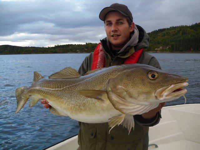 Na ryby do Norwegii - www.przewodnicywedkarscy.pl - Wyprawy do Norwegii