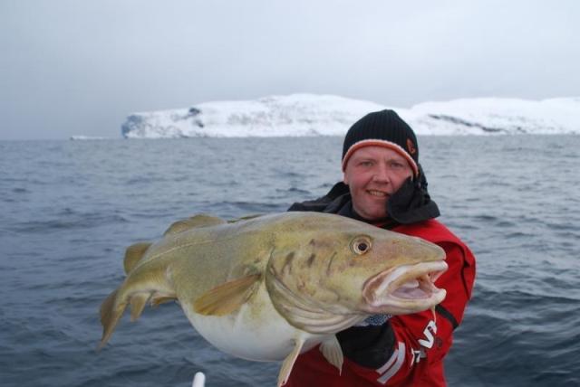 Wyspa Soroya - www.przewodnicywedkarscy.pl - Wyprawy do Norwegii