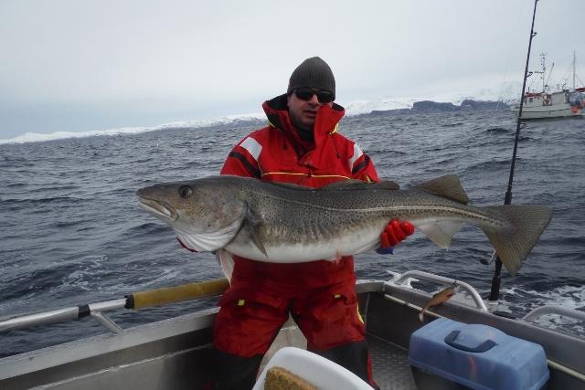 Wyspa Soroya - www.przewodnicywedkarscy.pl - Na ryby do Norwegii