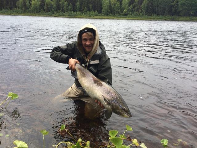 Łosoś Laponia - www.przewodnicywedkarscy.pl - Wyprawy do Szwecji