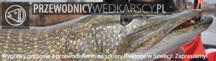 Szkiery Blekinge - www.przewodnicywedkarscy.pl - Wyprawy do Szwecji