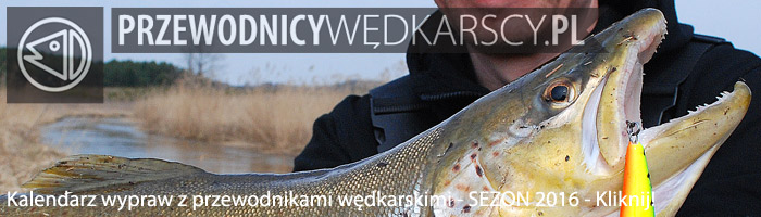 Wyprawy wędkarskie - www.przewodnicywedkarscy.pl - Wyprawy na ryby
