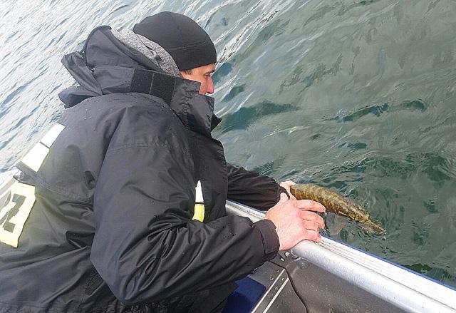Wyprawy na ryby - www.przewodnicywedkarscy.pl - Wyprawy z przewodnikiem