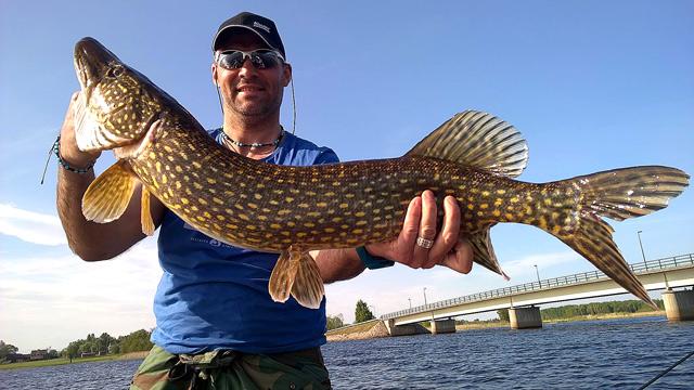 Na ryby do Szwecji - www.przewodnicywedkarscy.pl - Wyprawy wędkarskie