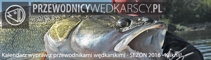 Wyprawy na ryby - www.przewodnicywedkarscy.pl - Wyprawy wędkarskie